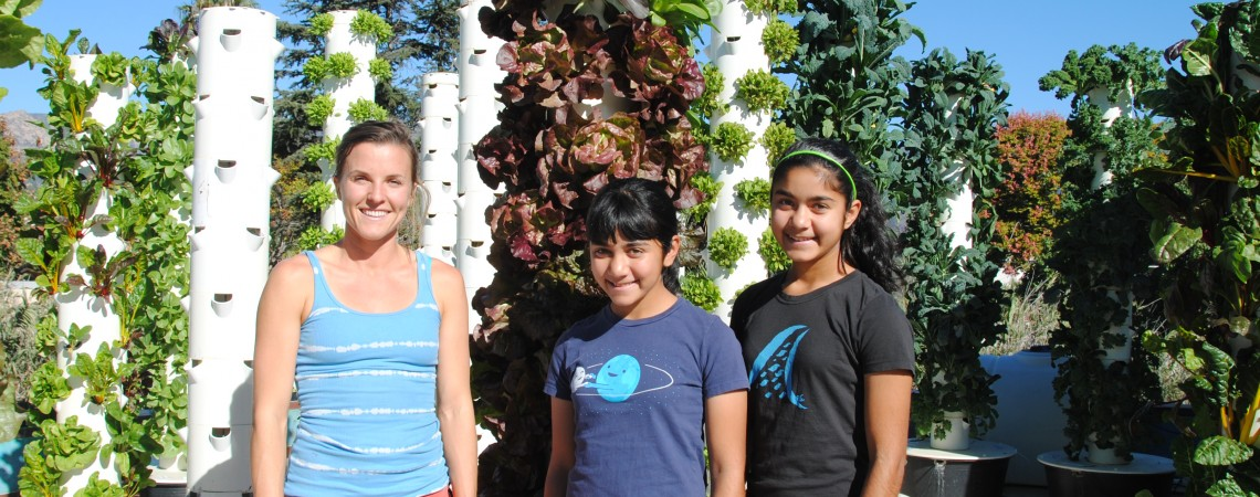 Aeroponics Outreach – Chapala Gardens